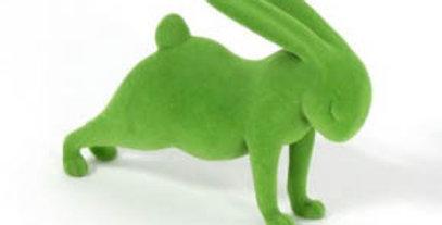 Green Yoga Plank Bunny