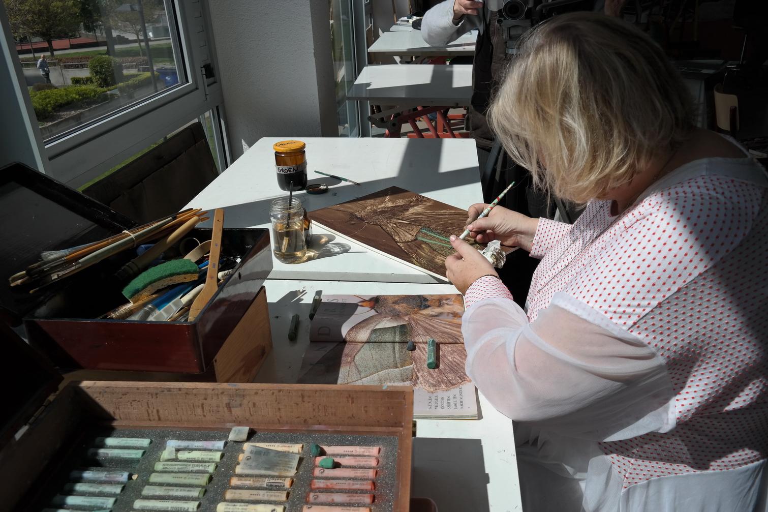 Laure Van De Meele Brou de noix 6