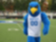 Bentley mascot approaches on football field