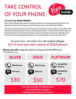 Virgin Mobile Pricing Project