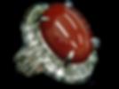 赤サンゴリング0.png