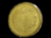 新20円金貨0.png