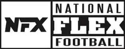 NFX-hoz-logo.webp