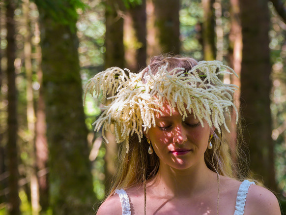 A Midsummer Dream in an enchanted Nordic Forest
