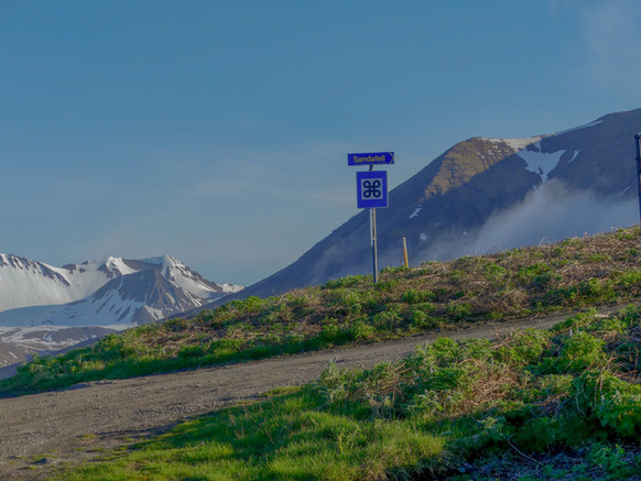 Hiking Sandafell in Þingeyri, Iceland. The hard way