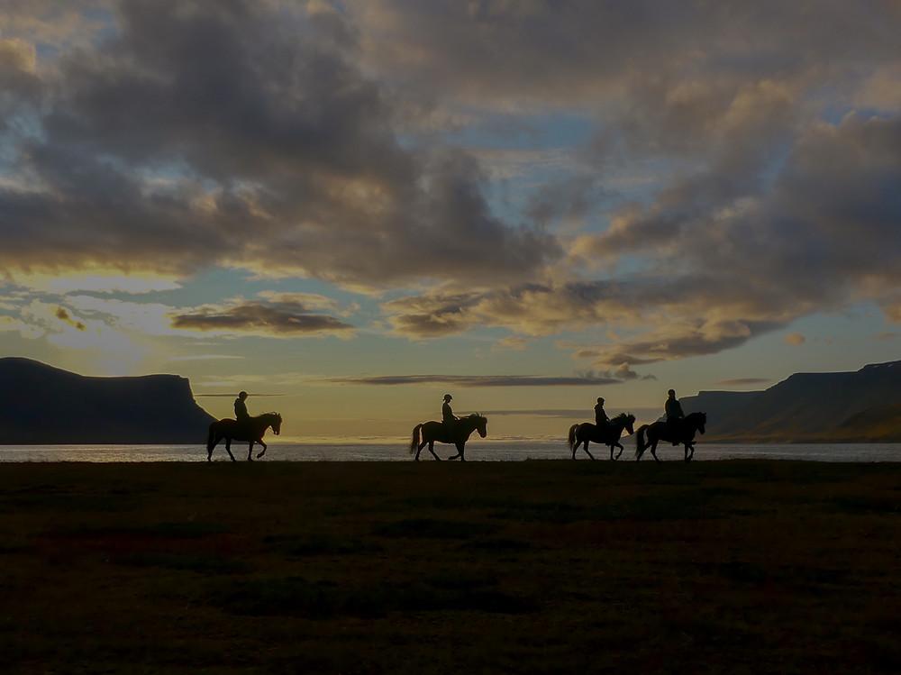 Horseback Riding in Dýrafjörður, Iceland.