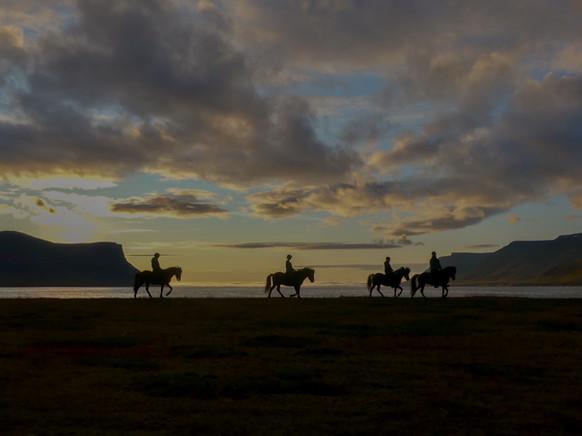 Horseback Riding in Dýrafjörður, Iceland