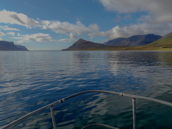 Sailing Dýrafjörður, another perspective on one of the nicest fjords in the Westfjords of Iceland