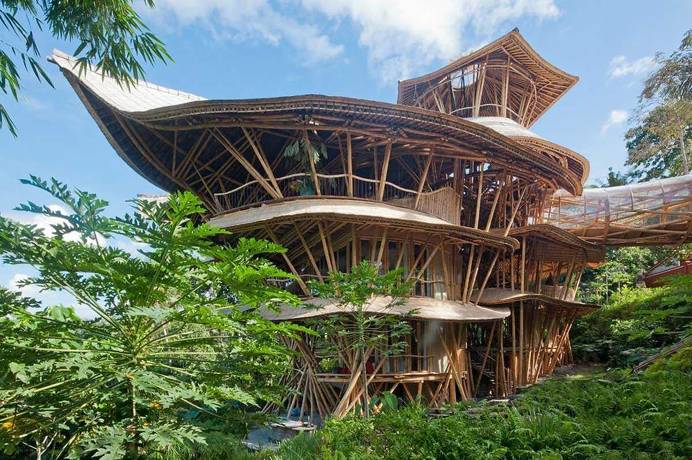 Bamboo house green revolution