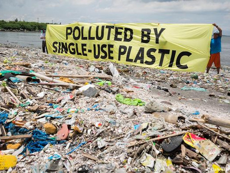 Why We Cannot Simply Just Cut Out Plastic?