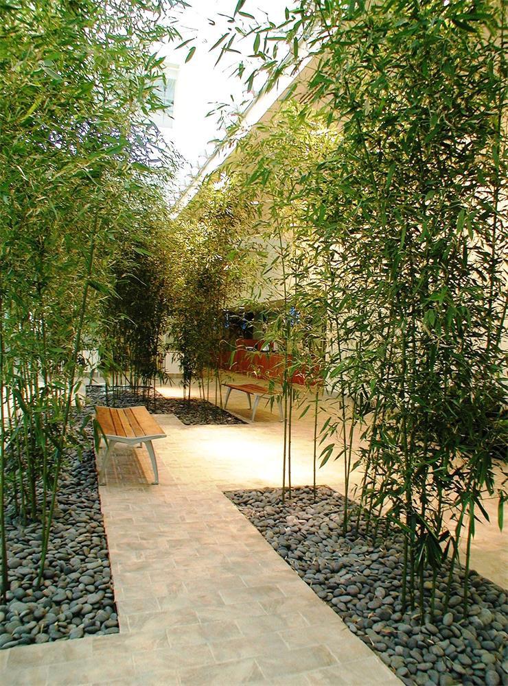 modernize your garden