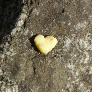 Scrambled Egg Heart