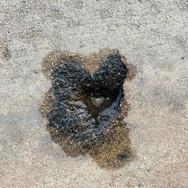 Triple Sidewalk Heart
