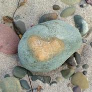 Carpenteria Heart 1