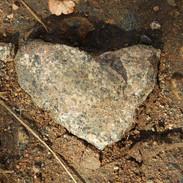 Julian Heart 2