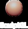 11 loghi programmi 3d.png