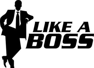 What do CEOs really do (IMO)
