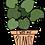 Thumbnail: I Wet My Plants Sticker