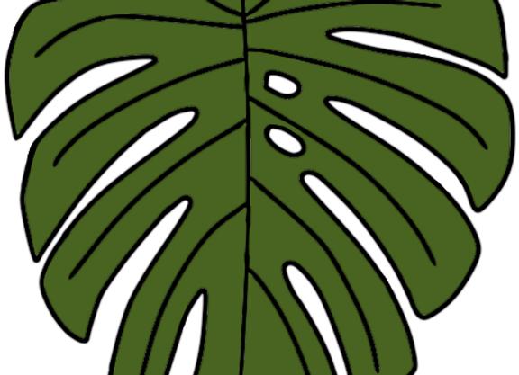 Monstera Leaf Stickers