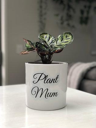 Plant Mum Pot Quote