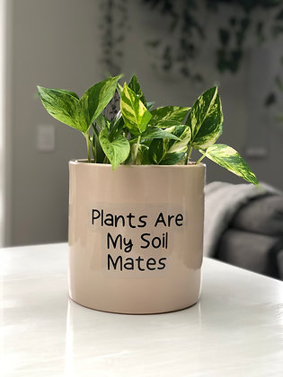 Plants Are My Soil Mates Pot Quote
