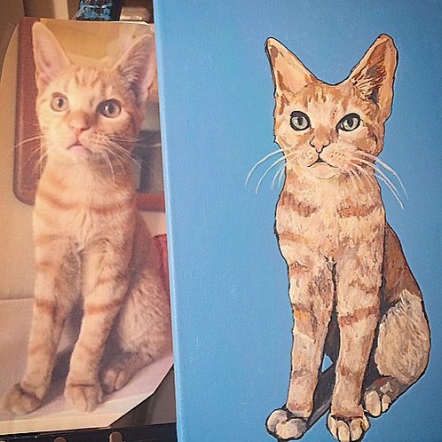 11 x 14 inch Pet Portrait