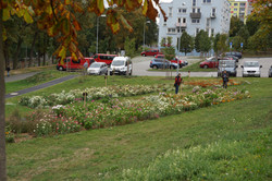 Experimentální směsi v Plzni 2015