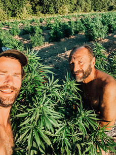 Steve gets his love of cannabis and his shirtlessness from Joe