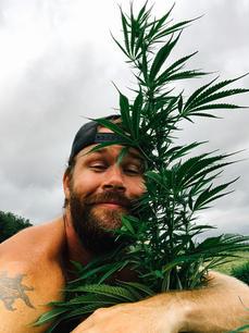 Steve is in love with hemp