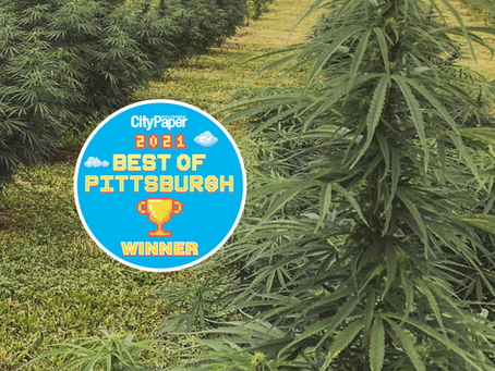 PENN'S CHOICE is voted 2nd Best CBD Shop Pittsburgh