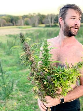 Steve Gibson holding a bouquet of hemp