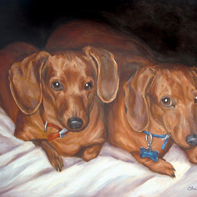 Dolly's Dogs