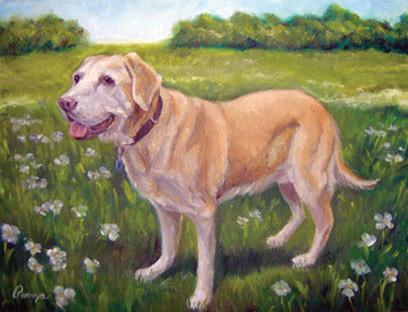Dave's Dog