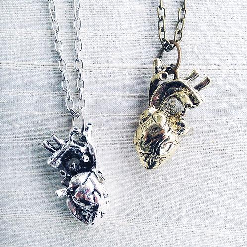 """HEART ANATOMY"" Silver or bronze"