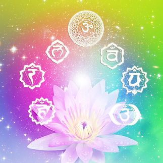 seven symbols of chakra with a flower lo