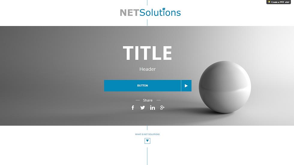 NET SOLUTIONS | APPME - 1 PAGE PREMIUM