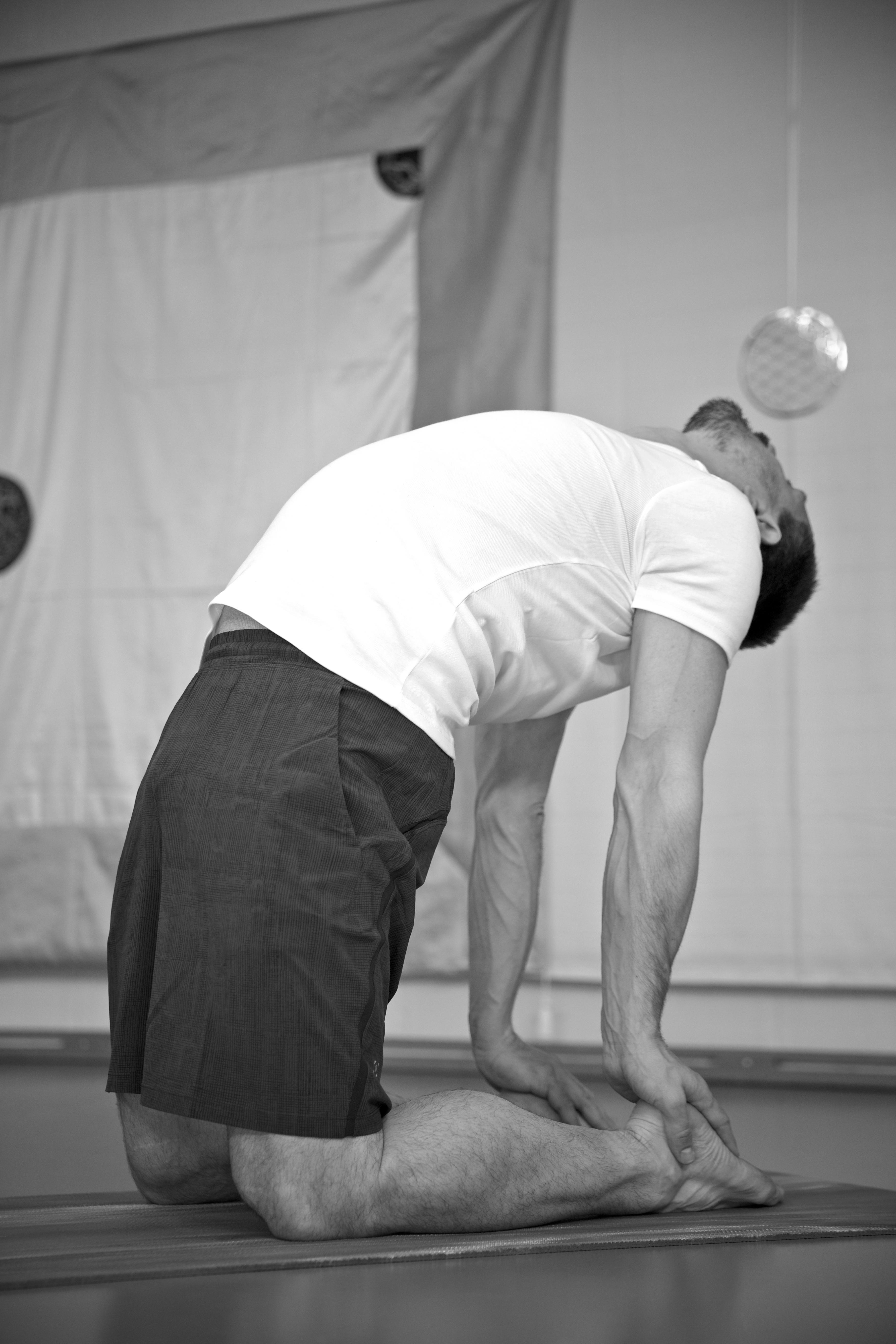 Beweglichkeit, Herz und Niere
