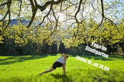 Yoga in Chur, In- und Outdoor Yoga