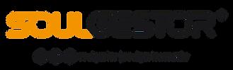 Logo Soulgestor_horizontal.png