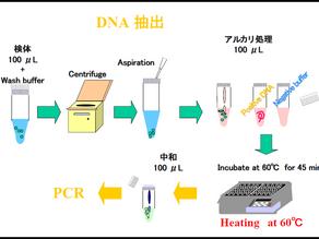 いま一度 PCR検査について知ってください
