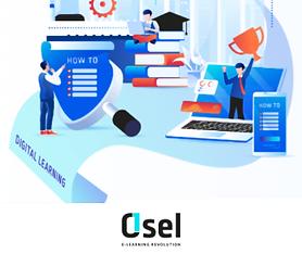 Partner OSEL.png