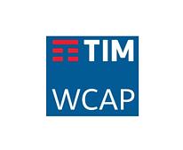 TIM WCAP.png