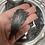 Thumbnail: Black Kyanite