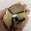 Thumbnail: Septarian Palm stone