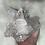 Thumbnail: Clear Quartz Cluster (XL)