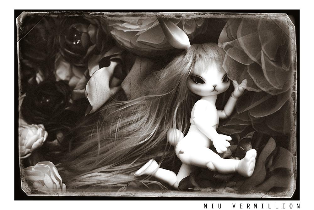 dark-remembrances_by_miu-vermillion_07s.jpg