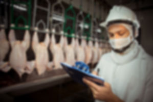 Fotografia de Alimentos, food photography, product photography