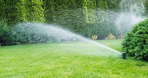 Bewässerung.jpeg