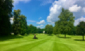 Rasenpflege, Golf.jpeg