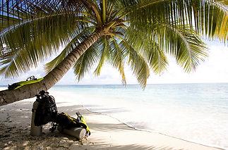 dive holiday.jpg